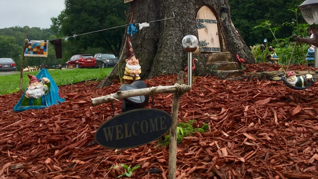 Gnome Front Yard